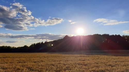 18. Afternoon Sun