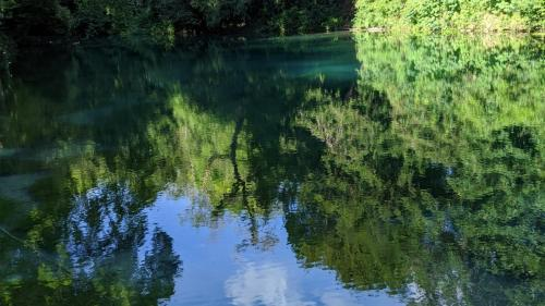2. Beautiful Clear Waters at The Silent Pool, Surrey