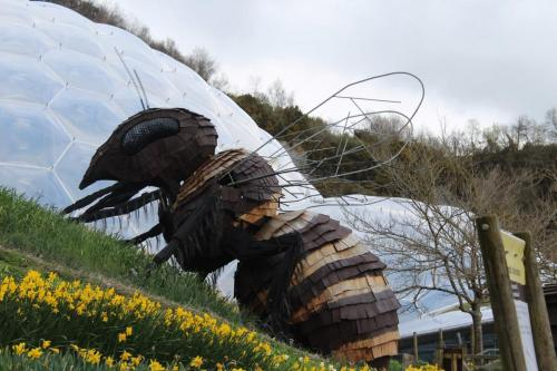 4. Bee at The Eden Project