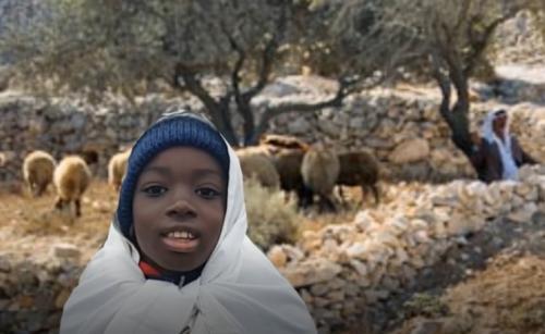 Ryan/Abe the Shepherd